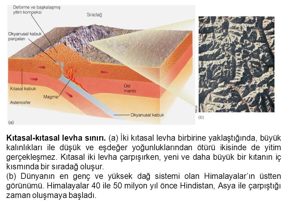 Kıtasal-kıtasal levha sınırı. (a) İki kıtasal levha birbirine yaklaştığında, büyük kalınlıkları ile düşük ve eşdeğer yoğunluklarından ötürü ikisinde d