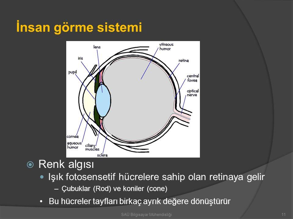 İnsan görme sistemi  Renk algısı Işık fotosensetif hücrelere sahip olan retinaya gelir –Çubuklar (Rod) ve koniler (cone) Bu hücreler tayfları birkaç
