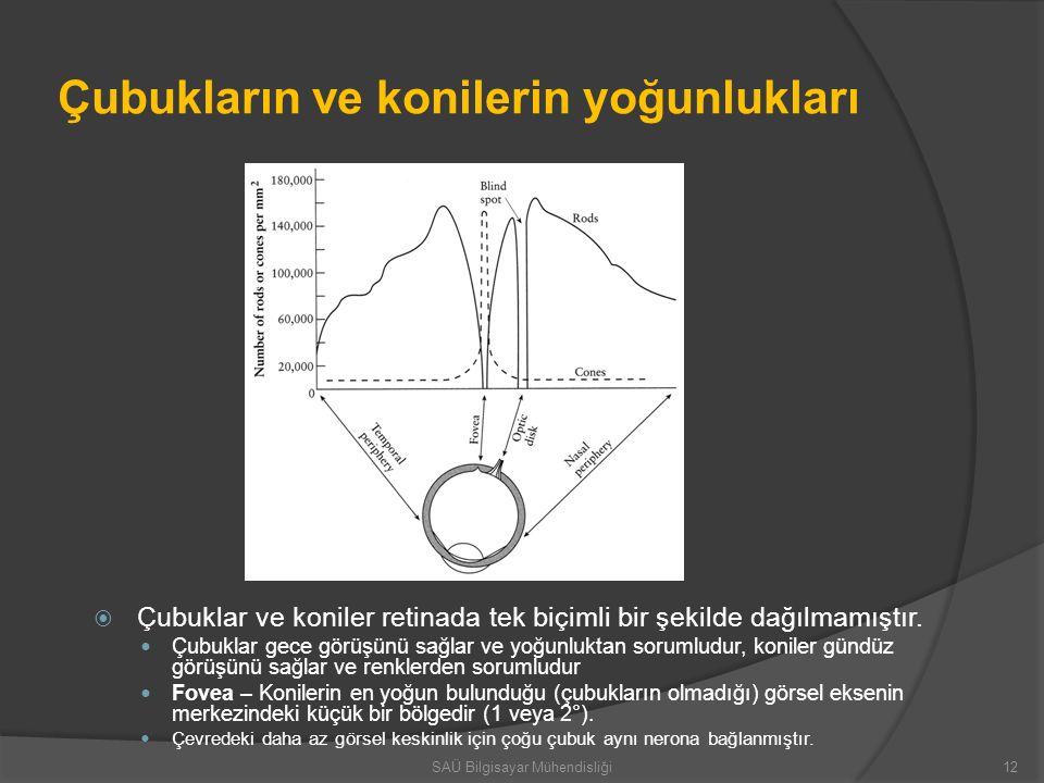 Çubukların ve konilerin yoğunlukları  Çubuklar ve koniler retinada tek biçimli bir şekilde dağılmamıştır. Çubuklar gece görüşünü sağlar ve yoğunlukta