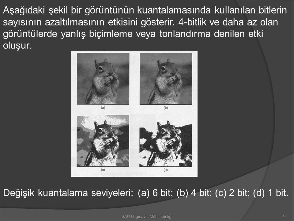 Aşağıdaki şekil bir görüntünün kuantalamasında kullanılan bitlerin sayısının azaltılmasının etkisini gösterir. 4-bitlik ve daha az olan görüntülerde y