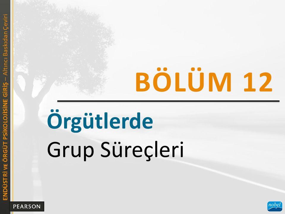 Örgütlerde Grup Süreçleri BÖLÜM 12