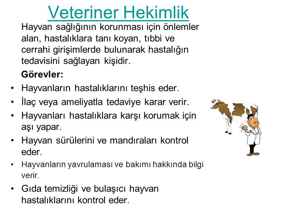 Veteriner Hekimlik Hayvan sağlığının korunması için önlemler alan, hastalıklara tanı koyan, tıbbi ve cerrahi girişimlerde bulunarak hastalığın tedavisini sağlayan kişidir.