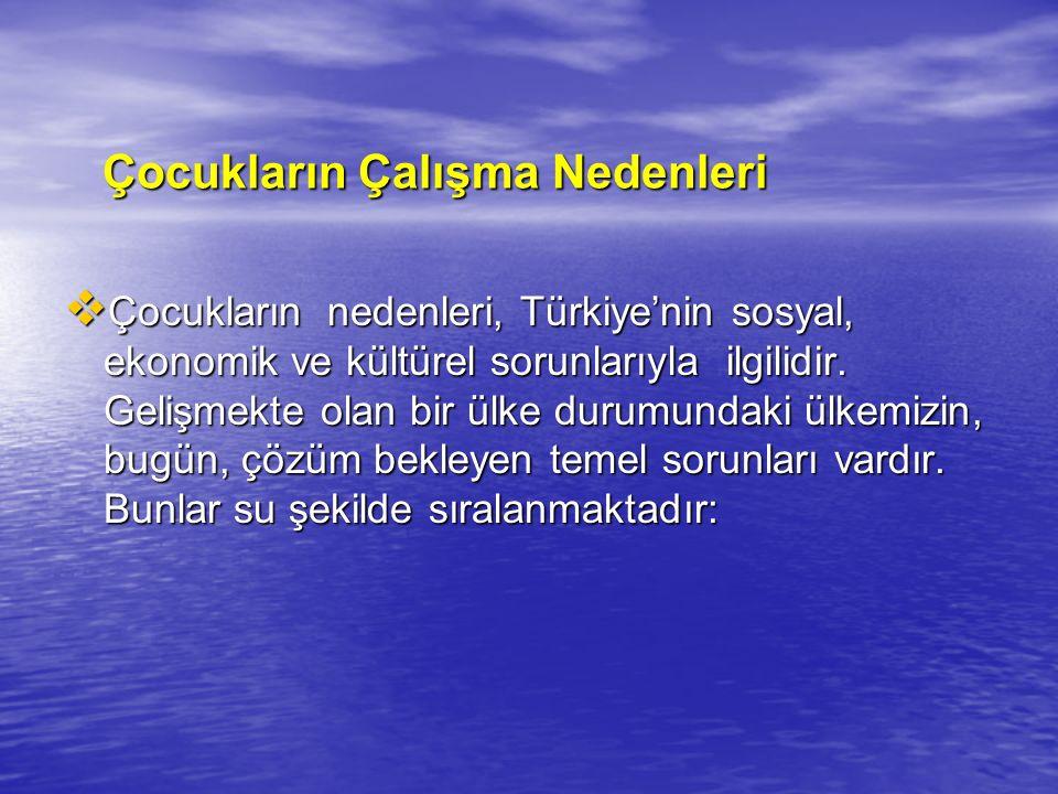 Çocukların Çalışma Nedenleri Çocukların Çalışma Nedenleri  Çocukların nedenleri, Türkiye'nin sosyal, ekonomik ve kültürel sorunlarıyla ilgilidir. Gel