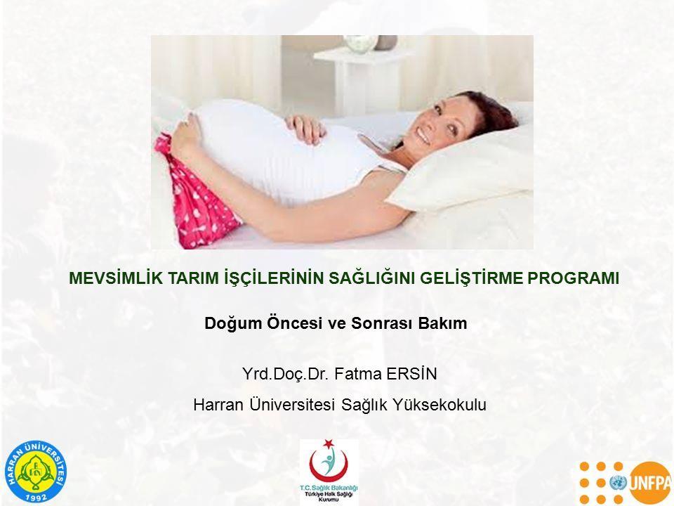 MEVSİMLİK TARIM İŞÇİLERİNİN SAĞLIĞINI GELİŞTİRME PROGRAMI Yrd.Doç.Dr. Fatma ERSİN Harran Üniversitesi Sağlık Yüksekokulu Doğum Öncesi ve Sonrası Bakım