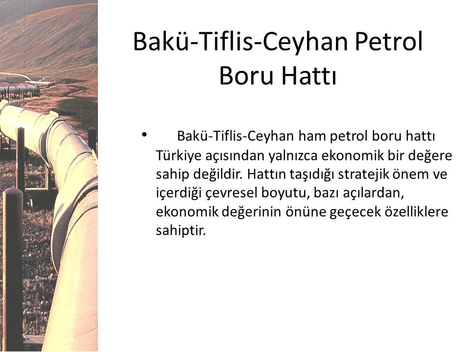 Bakü-Tiflis-Ceyhan Petrol Boru Hattı Bakü-Tiflis-Ceyhan ham petrol boru hattı Türkiye açısından yalnızca ekonomik bir değere sahip değildir. Hattın ta