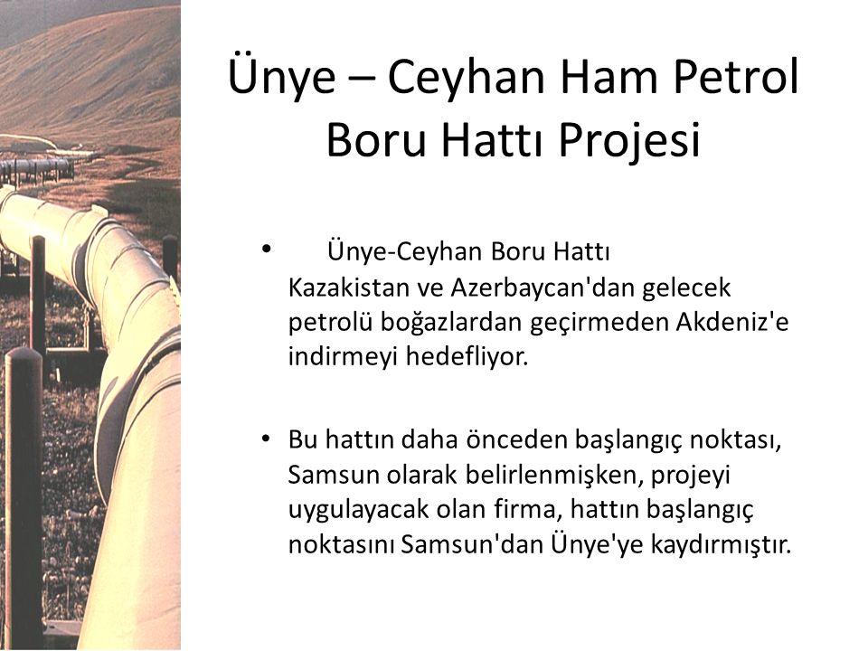 Ünye-Ceyhan Boru Hattı Kazakistan ve Azerbaycan'dan gelecek petrolü boğazlardan geçirmeden Akdeniz'e indirmeyi hedefliyor. Bu hattın daha önceden başl