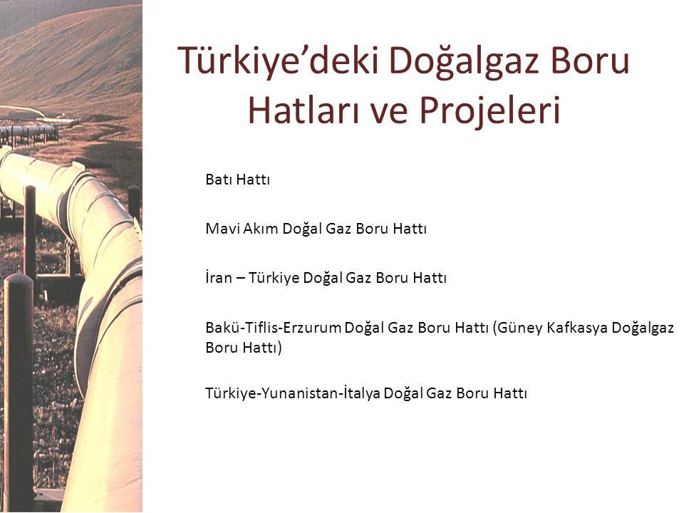 Türkiye'deki Doğalgaz Boru Hatları ve Projeleri Batı Hattı Mavi Akım Doğal Gaz Boru Hattı İran – Türkiye Doğal Gaz Boru Hattı Bakü-Tiflis-Erzurum Doğa