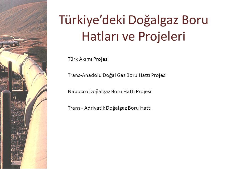 Türkiye'deki Doğalgaz Boru Hatları ve Projeleri Türk Akımı Projesi Trans-Anadolu Doğal Gaz Boru Hattı Projesi Nabucco Doğalgaz Boru Hattı Projesi Tran