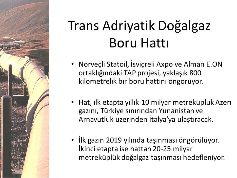 Trans Adriyatik Doğalgaz Boru Hattı Norveçli Statoil, İsviçreli Axpo ve Alman E.ON ortaklığındaki TAP projesi, yaklaşık 800 kilometrelik bir boru hatt