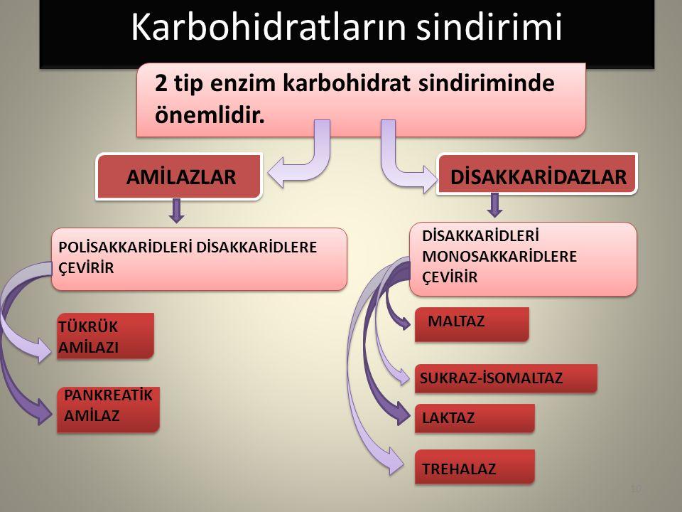 Karbohidratların sindirimi 2 tip enzim karbohidrat sindiriminde önemlidir. AMİLAZLARDİSAKKARİDAZLAR TÜKRÜK AMİLAZI PANKREATİK AMİLAZ POLİSAKKARİDLERİ