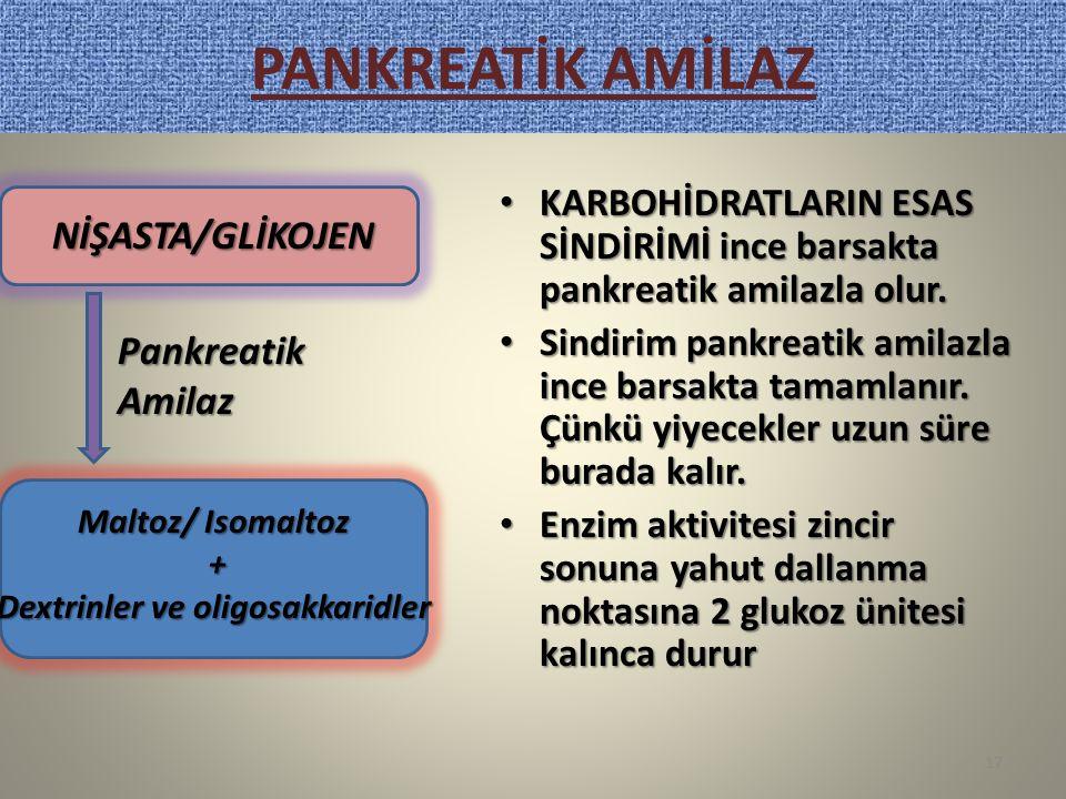 PANKREATİK AMİLAZ KARBOHİDRATLARIN ESAS SİNDİRİMİ ince barsakta pankreatik amilazla olur. KARBOHİDRATLARIN ESAS SİNDİRİMİ ince barsakta pankreatik ami