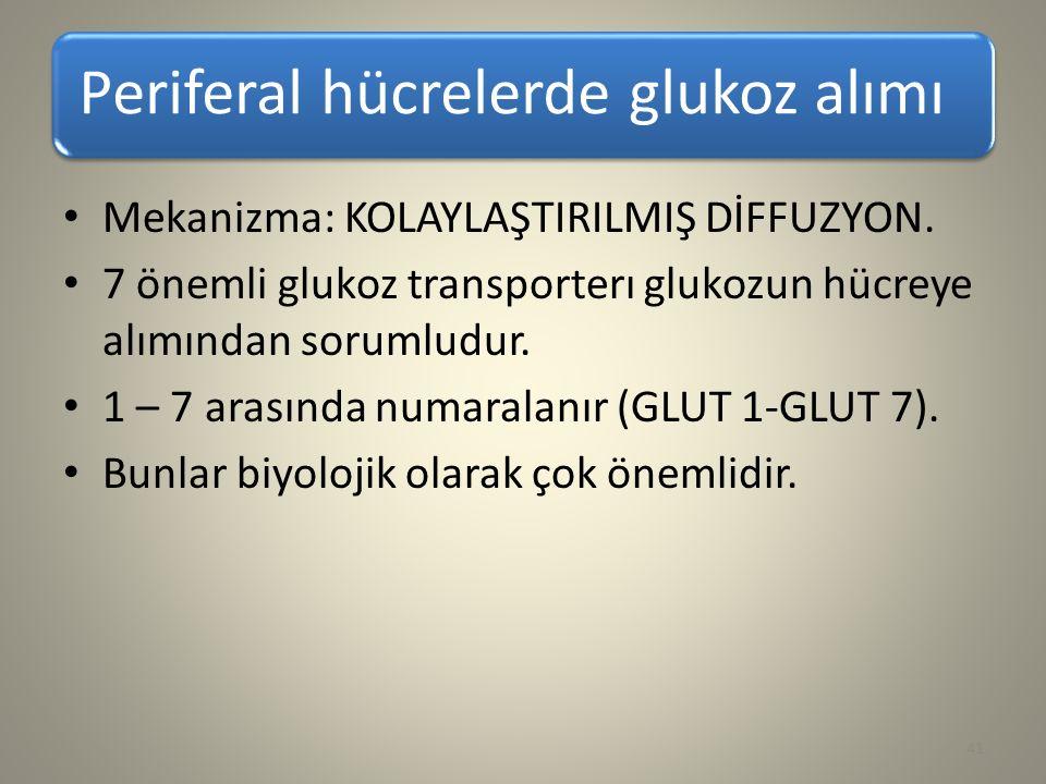 Periferal hücrelerde glukoz alımı Mekanizma: KOLAYLAŞTIRILMIŞ DİFFUZYON. 7 önemli glukoz transporterı glukozun hücreye alımından sorumludur. 1 – 7 ara