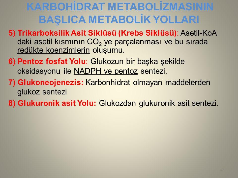 KARBOHİDRAT METABOLİZMASININ BAŞLICA METABOLİK YOLLARI 5) Trikarboksilik Asit Siklüsü (Krebs Siklüsü): Asetil-KoA daki asetil kısmının CO 2 ye parçala