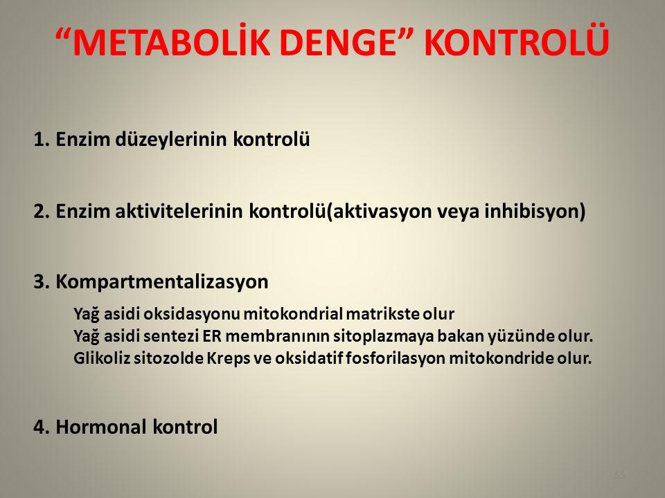 """""""METABOLİK DENGE"""" KONTROLÜ 1. Enzim düzeylerinin kontrolü 2. Enzim aktivitelerinin kontrolü(aktivasyon veya inhibisyon) 3. Kompartmentalizasyon Yağ as"""