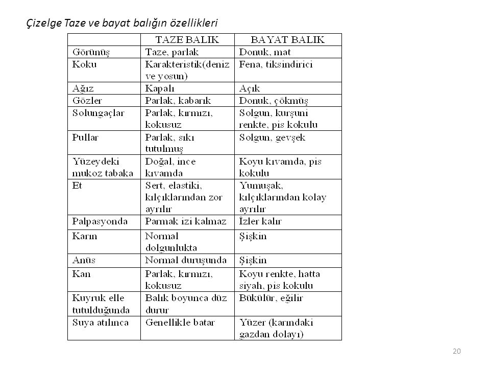 Çizelge Taze ve bayat balığın özellikleri 20