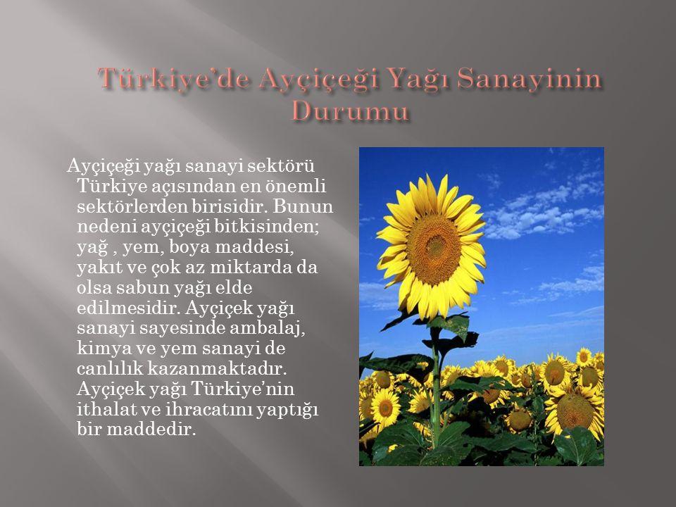 Ayçiçeği yağı sanayi sektörü Türkiye açısından en önemli sektörlerden birisidir. Bunun nedeni ayçiçeği bitkisinden; yağ, yem, boya maddesi, yakıt ve ç
