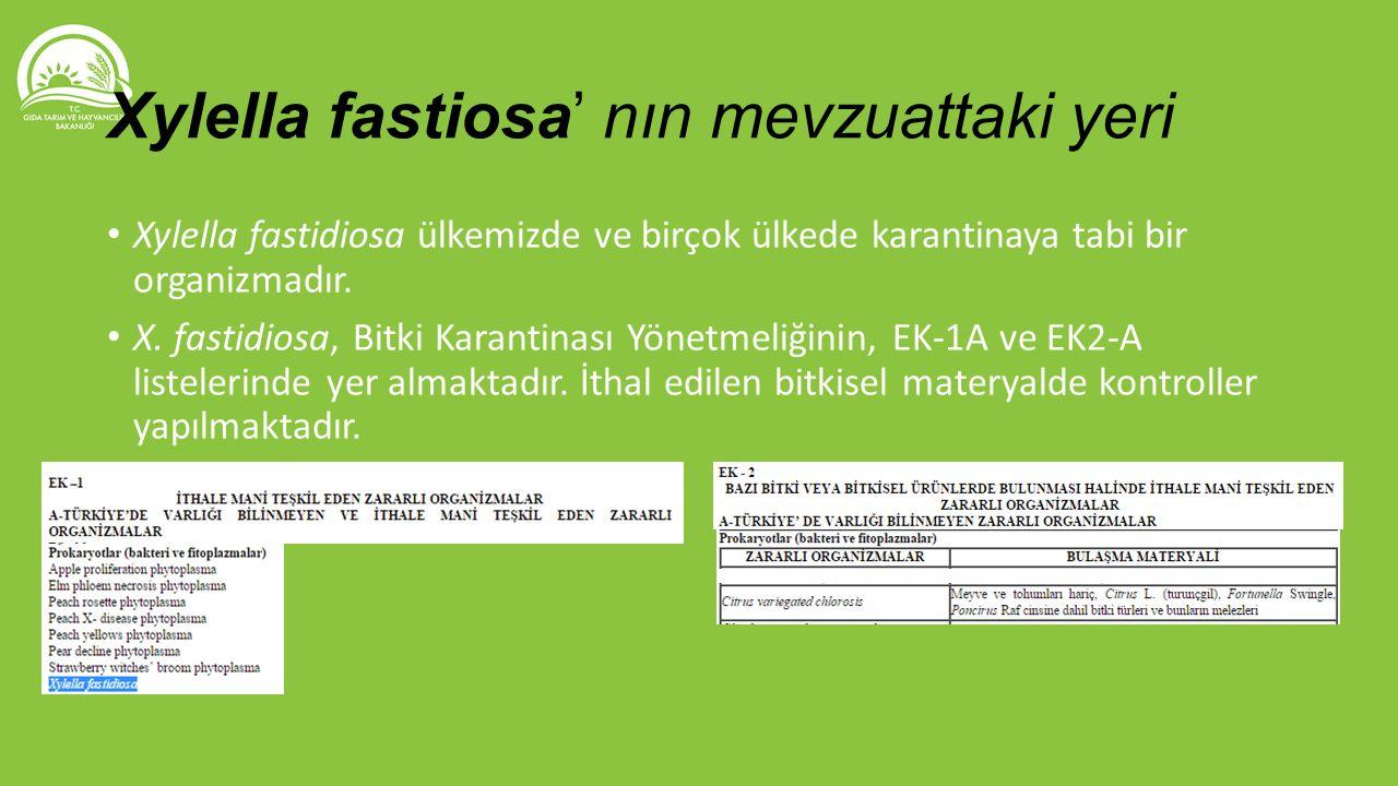 Xylella fastidiosa ülkemizde ve birçok ülkede karantinaya tabi bir organizmadır. X. fastidiosa, Bitki Karantinası Yönetmeliğinin, EK-1A ve EK2-A liste