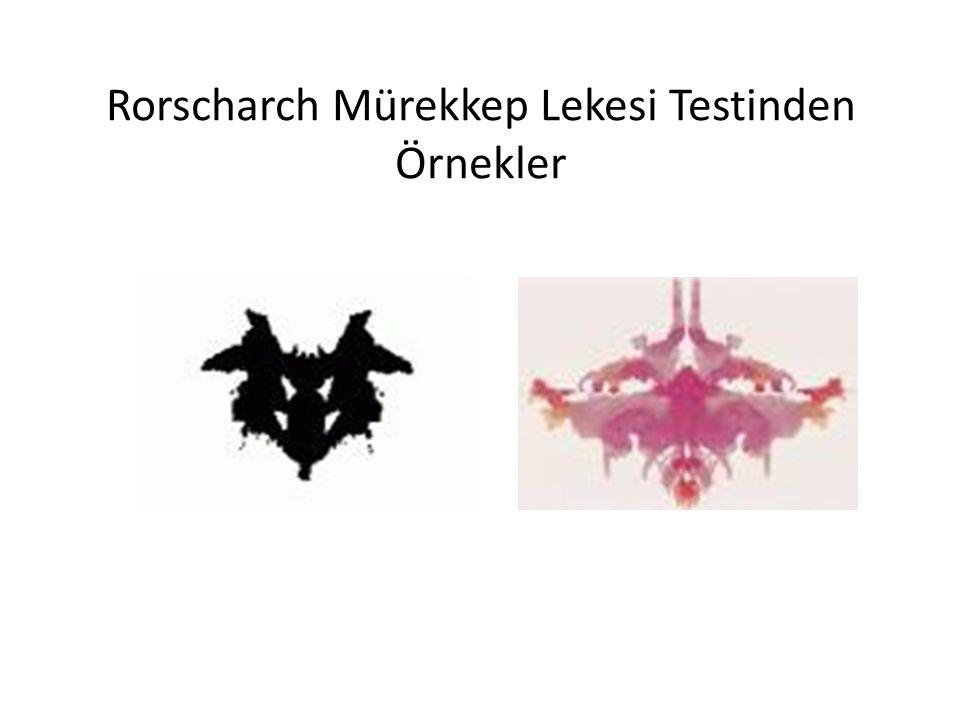 Rorscharch Mürekkep Lekesi Testinden Örnekler