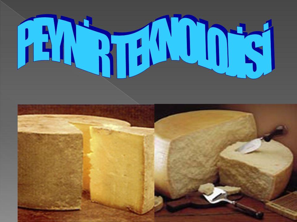  Starter kültürdeki mikroorganizmalar, peynir yapımının bütün safhalarında önemli rol oynarlar.
