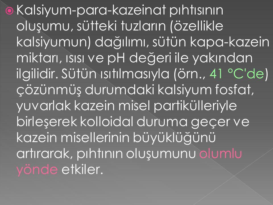  Kalsiyum-para-kazeinat pıhtısının oluşumu, sütteki tuzların (özellikle kalsiyumun) dağılımı, sütün kapa-kazein miktarı, ısısı ve pH değeri ile yakından ilgilidir.