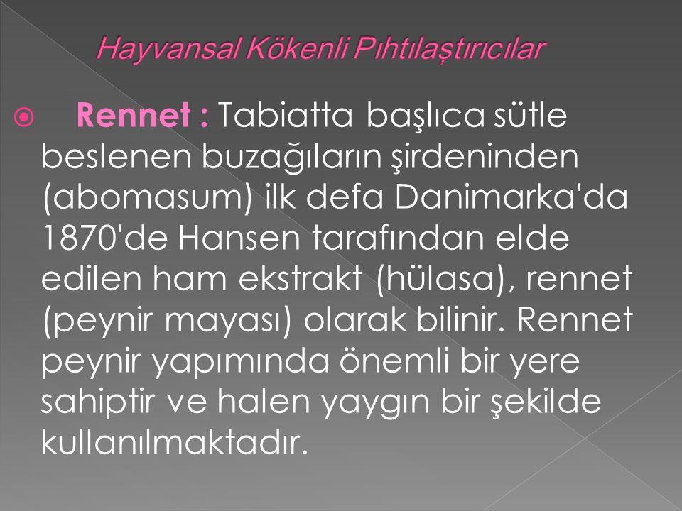  Rennet : Tabiatta başlıca sütle beslenen buzağıların şirdeninden (abomasum) ilk defa Danimarka da 1870 de Hansen tarafından elde edilen ham ekstrakt (hülasa), rennet (peynir mayası) olarak bilinir.