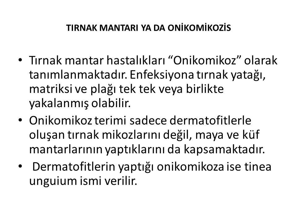 TIRNAK MANTARI YA DA ONİKOMİKOZİS Tırnak mantar hastalıkları Onikomikoz olarak tanımlanmaktadır.
