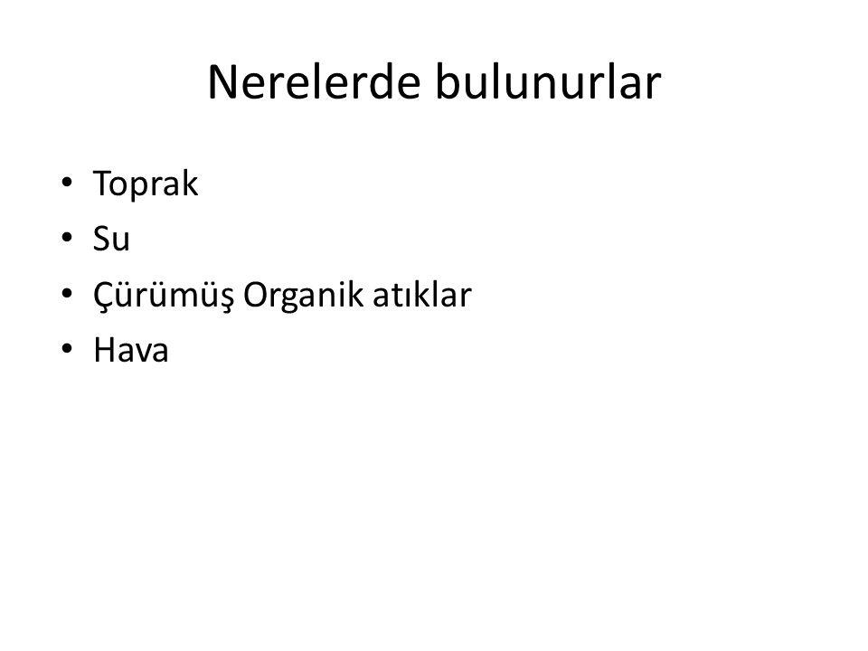 SINIFLANDIRMA Sınıflandırmada esas alınan kriterler: - Mikroskopik morfoloji (seksüel spor, hif septasyonu) - Makroskopik (koloni) morfoloji → küflerde çok önemli - Üreme şekli - Biyokimyasal özellikler → mayalarda önemli - Moleküler özellikler - Yaptıkları hastalıklar (klinik sınıflandırma)