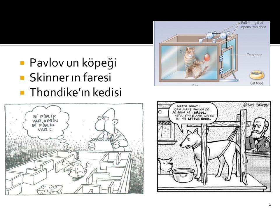  Pavlov un köpeği  Skinner ın faresi  Thondike'ın kedisi 2