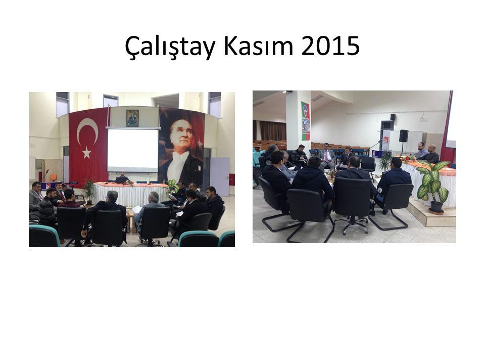 Çalıştay Kasım 2015