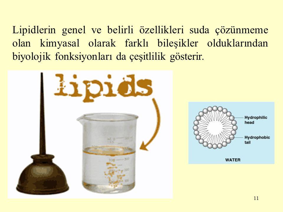 12 Lipidlerin sınıflandırılmaları Basit lipidler Bileşik lipidler Lipid türevleri Lipidlerle ilgili diğer maddeler