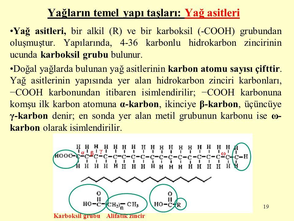 Yağ asitlerinin sınıflandırılmaları : Doymuş (satüre) yağ asitleri: Hidrokarbon zincirleri hiç çift bağ içermeyen ve dallanmamış olan yağ asitleridirler.