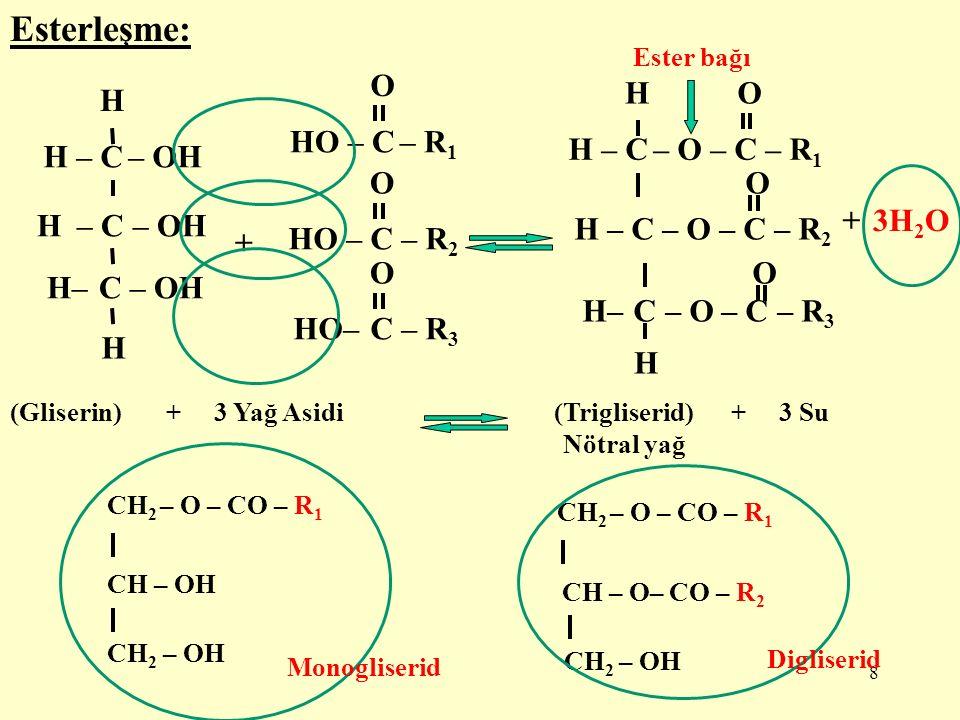 9 Gliserinin (gliserol) tüm hidroksil grupları ile yağ asitleri esterleşmeyebilir.