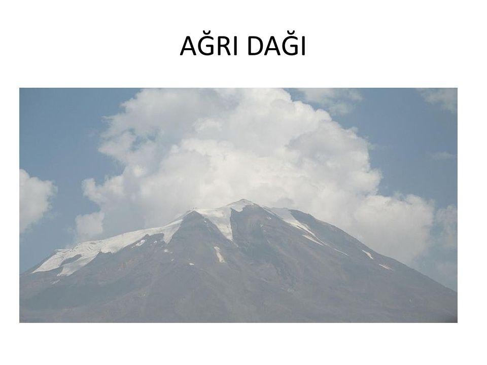 TÜRRKİYE'NİN EN YÜKSEK DAĞLARI DağRakım (metre)il Ağrı Dağı5137Ağrı Cilo Dağı4170Hakkari Süphan Dağı4049Bitlis Kaçkar Dağı3932Rize Erciyes Dağı3916Kay
