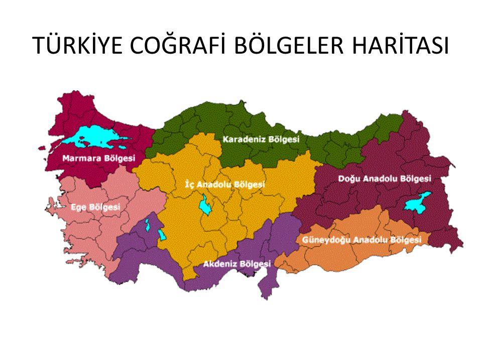 TÜRKİYE'NİN COĞRAFİ BÖLGELERİ Türkiye'nin üç tarafının denizlerle çevrilmiş olması, dağların Anadolu'nun iç kesimlerini kıyılardan ayırması, iklim, ul