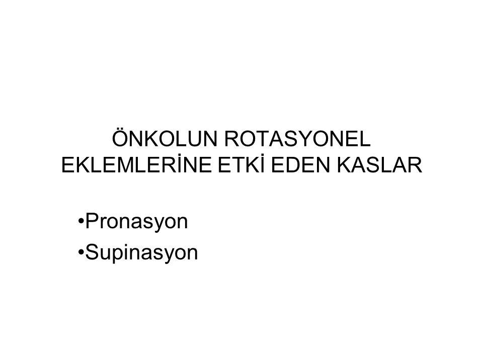 ÖNKOLUN ROTASYONEL EKLEMLERİNE ETKİ EDEN KASLAR Pronasyon Supinasyon