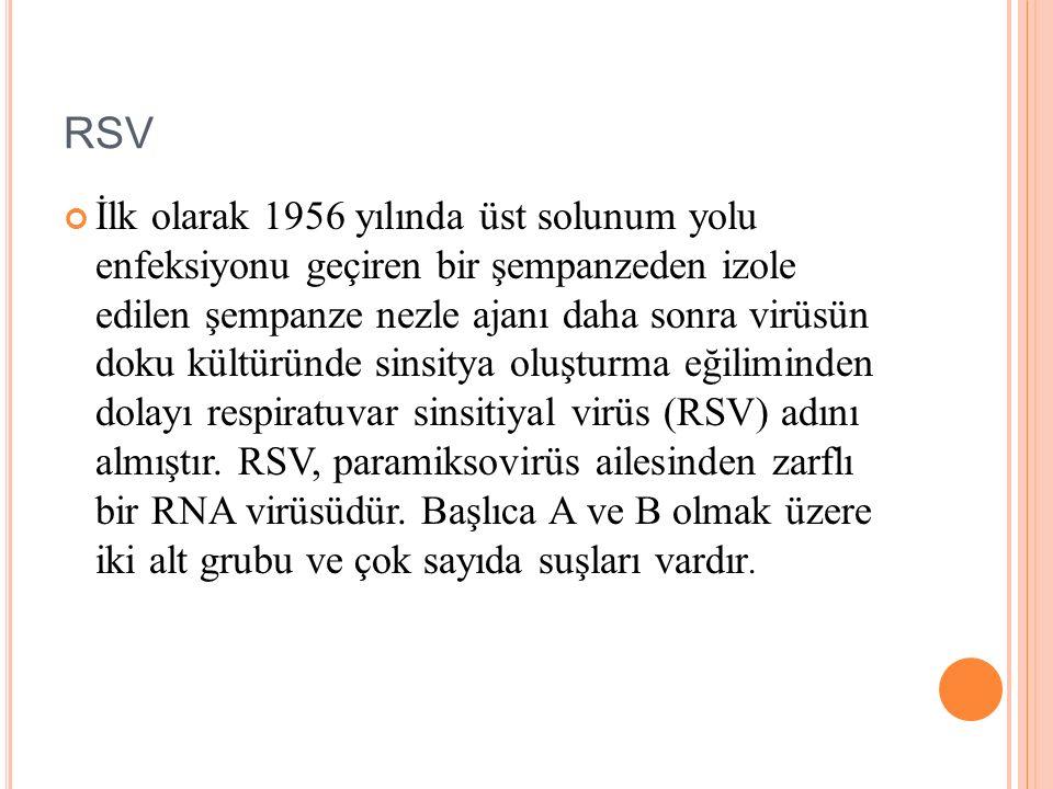 RSV İlk olarak 1956 yılında üst solunum yolu enfeksiyonu geçiren bir şempanzeden izole edilen şempanze nezle ajanı daha sonra virüsün doku kültüründe sinsitya oluşturma eğiliminden dolayı respiratuvar sinsitiyal virüs (RSV) adını almıştır.