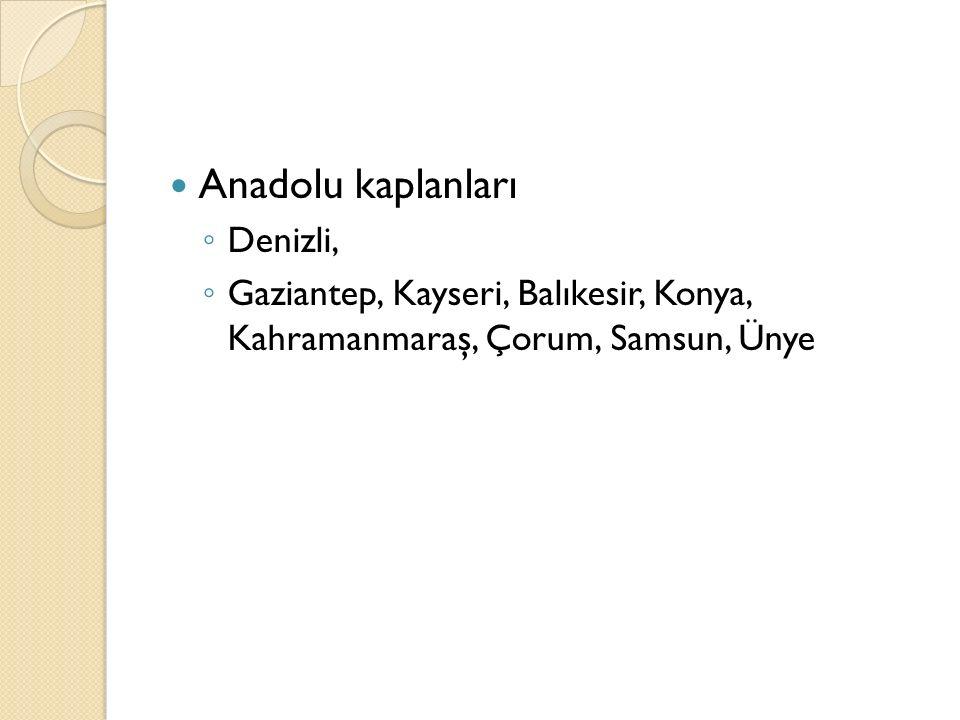 Anadolu kaplanları ◦ Denizli, ◦ Gaziantep, Kayseri, Balıkesir, Konya, Kahramanmaraş, Çorum, Samsun, Ünye