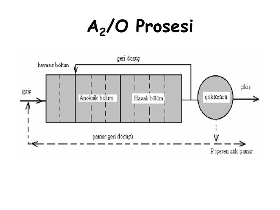 A 2 /O Prosesi