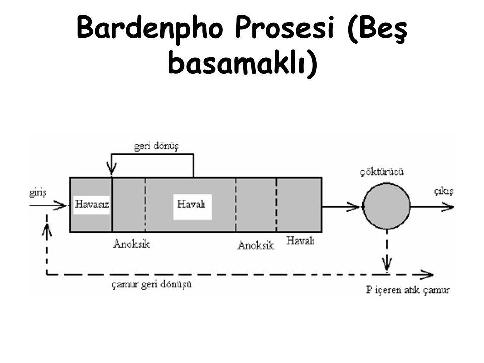 Bardenpho Prosesi (Beş basamaklı)