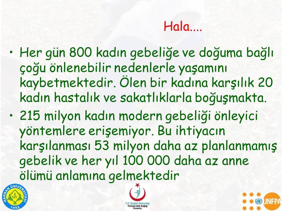 Hala....