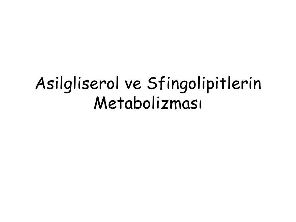Gliserolipidler ve Sfingolipidler