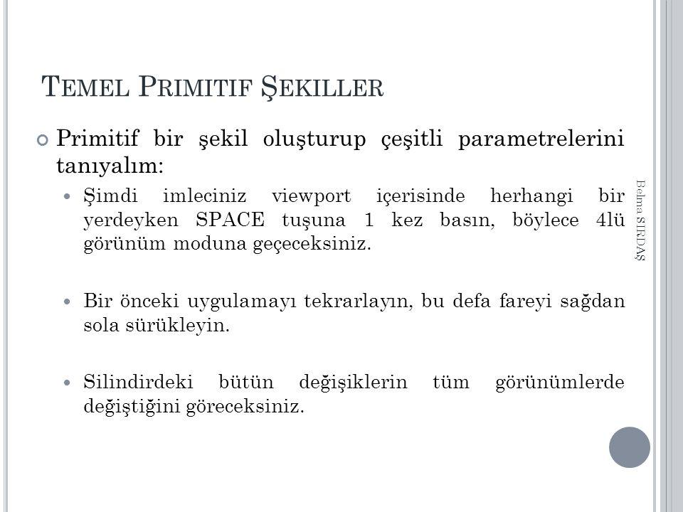 T EMEL P RIMITIF Ş EKILLER Primitif bir şekil oluşturup çeşitli parametrelerini tanıyalım: Şimdi imleciniz viewport içerisinde herhangi bir yerdeyken