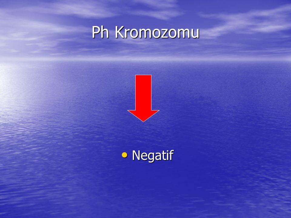 Ph Kromozomu Negatif Negatif