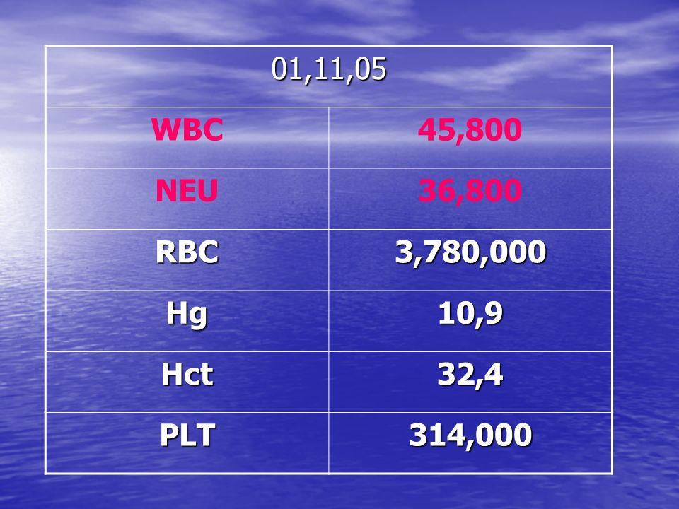01,11,05 WBC45,800 NEU36,800 RBC3,780,000 Hg10,9 Hct32,4 PLT314,000