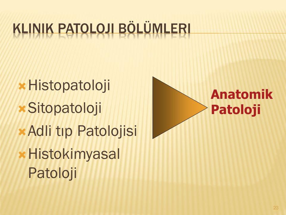  Histopatoloji  Sitopatoloji  Adli tıp Patolojisi  Histokimyasal Patoloji 23 Anatomik Patoloji