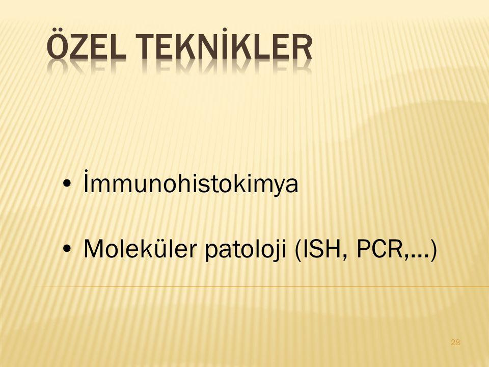 28 İmmunohistokimya Moleküler patoloji (ISH, PCR,...)