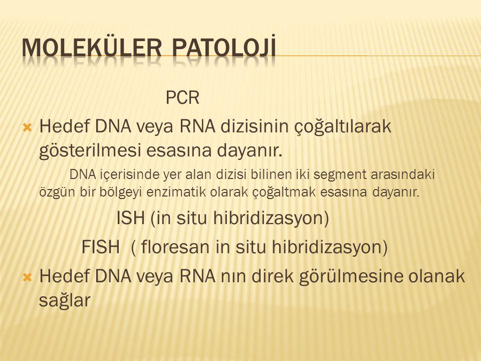 PCR  Hedef DNA veya RNA dizisinin çoğaltılarak gösterilmesi esasına dayanır.