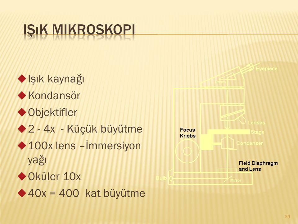  Işık kaynağı  Kondansör  Objektifler  2 - 4x - Küçük büyütme  100x lens –İmmersiyon yağı  Oküler 10x  40x = 400 kat büyütme 34