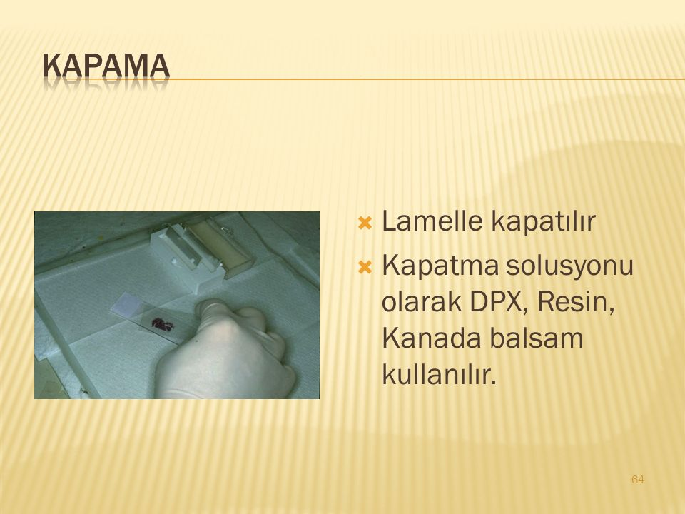  Lamelle kapatılır  Kapatma solusyonu olarak DPX, Resin, Kanada balsam kullanılır. 64