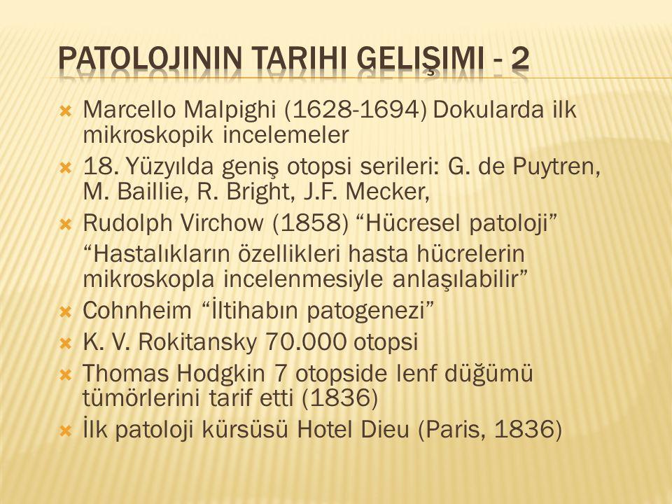 Marcello Malpighi (1628-1694) Dokularda ilk mikroskopik incelemeler  18.